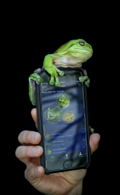 Frog ID   Citizen science talk   Education EDM